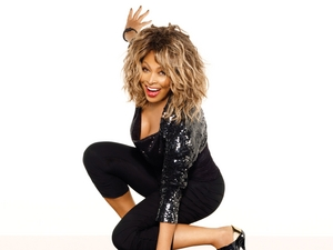 Tina Turner artist photo