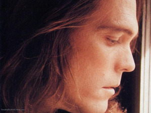 Timothy B Schmit artist photo