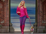 Legally Blonde The Musical (Touring) artist photo