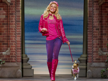 Legally Blonde The Musical (Touring) picture