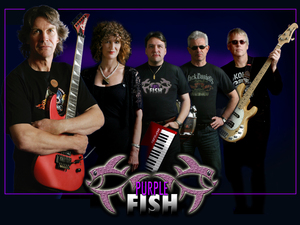 Purple Fish artist photo