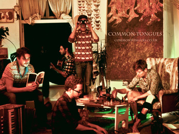 The Harvest Sessions: Common Tongues + House Of Hats + The Standard Lamps picture