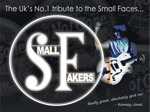 The Small Fakers artist photo