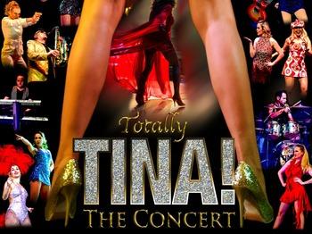 musical tina turner nederland