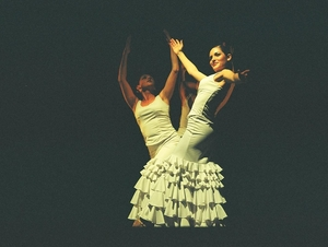Alma Flamenco Dance Company artist photo