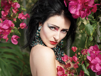 Siouxsie artist photo