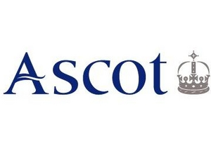 Ascot Racecourse artist photo