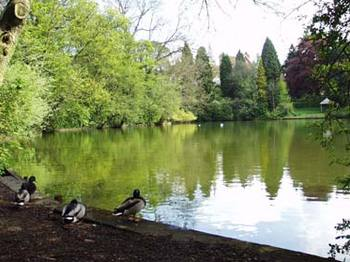 Moseley Park & Pool venue photo