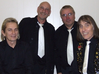 The Honeycombs Band artist photo