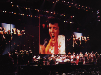 Elvis Presley In Concert artist photo
