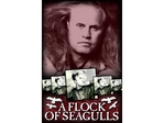 A Flock of Seagulls artist photo