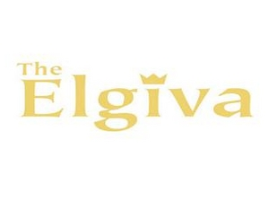 Elgiva Theatre artist photo