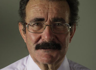 Professor Lord Robert Winston artist photo