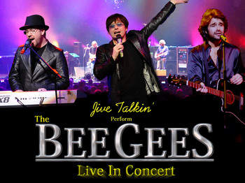 The Bee Gees Story: Jive Talkin' picture