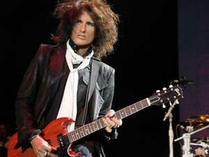 Joe Perry Project artist photo