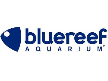 Blue Reef Bristol Aquarium venue photo