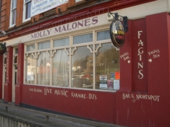 Molly Malones Irish Bar venue photo
