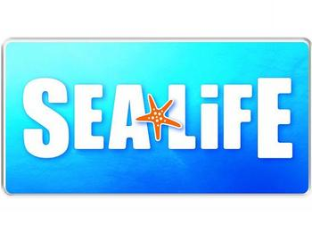 SEA LIFE London Aquarium venue photo