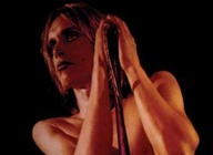 Iggy Pop artist photo