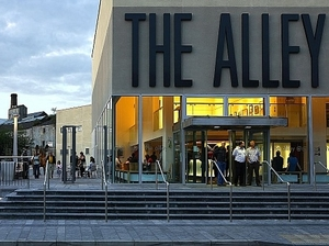 The Alley Arts Centre artist photo