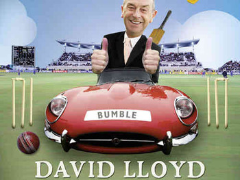 David 'Bumble' Lloyd artist photo