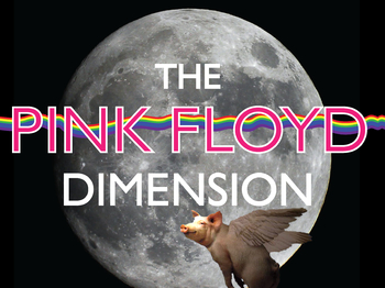The Pink Floyd Dimension artist photo