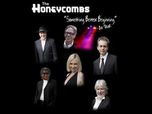 The Honeycombs artist photo