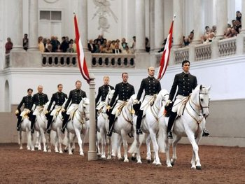 The Spanish Riding School Of Vienna picture