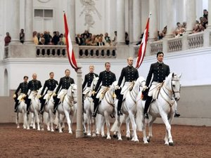 The Spanish Riding School Of Vienna artist photo