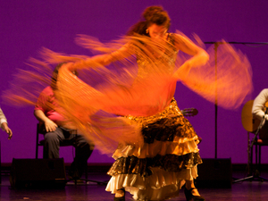 Ester's Flamenco Academy artist photo