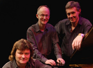 David Rees-Williams Trio artist photo