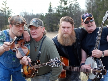 Hayseed Dixie picture