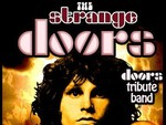 The Strange Doors artist photo