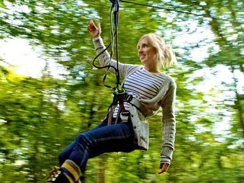 Go Ape! Haldon Forest Park venue photo