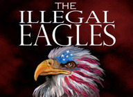 The Illegal Eagles artist photo
