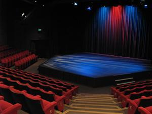 Gulbenkian Theatre artist photo