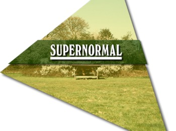 Supernormal Festival 2012 picture