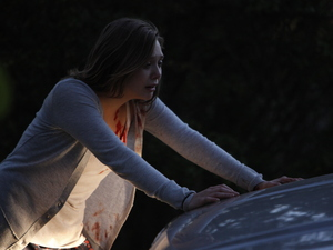 Film promo picture: Silent House