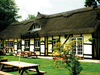 The Old Thatch photo