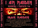 I Am Maiden artist photo