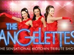 The Angelettes - The Sensational Motown Tribute Show artist photo