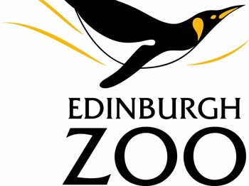 Lion Pride And Hyenas as well Edinburgh Zoo also 40321359137287626 furthermore Baby Hippo also Dinosaur Quilt. on food safari