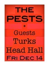 Flyer thumbnail for Pests' Christmas Party: (Sounds Like) The Pests + The Blanks