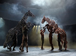 War Horse (Touring) artist photo