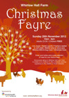 Flyer thumbnail for Christmas Fayre