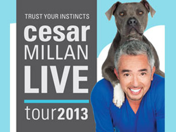 Trust Your Instincts Live Tour 2013: Cesar Millan - The Dog Whisperer picture