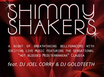 Shimmy Shakers: Joel Corry picture