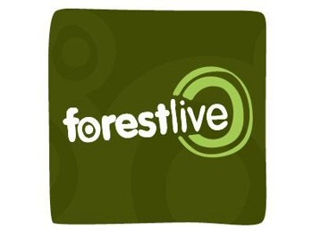 The Forestry Commission's Forest Live: Paloma Faith picture