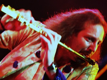 The Music Of Jethro Tull: Cold Flame + The Bloodhounds picture