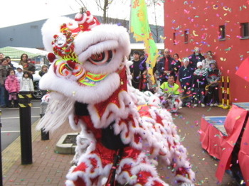 Chinese New Year 2013 picture